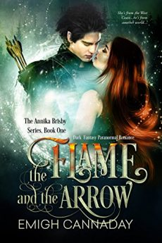 the-flame-and-the-arrow-dark-fantasy-paranormal-romance-the-annika-brisby-series-book-1