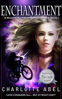 Enchantment (The Channie Series Book 1)