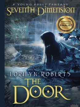 Seventh Dimension - The Door A Young Adult Fantasy (Seventh Dimension Series Book 1)